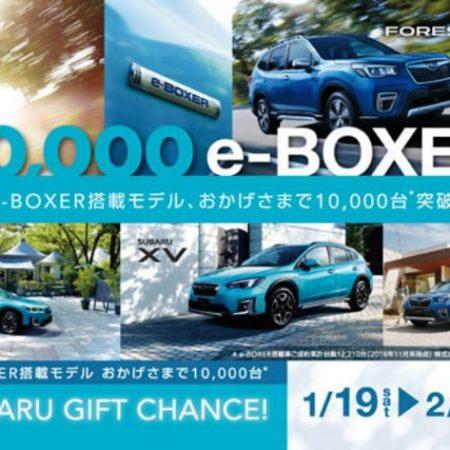 e-BOXER 10,000台突破!ご成約プレゼントも!