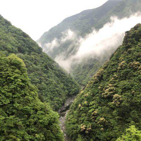 徳島の自然に囲まれる